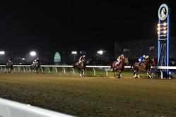 (C)神奈川県川崎競馬組合