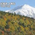 北海道の十勝岳で振幅の小さな火山性地震が増加 今後に注意