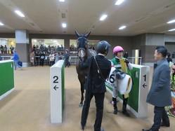 日曜東京6R新馬はハーツクライ産駒のアクロアイトが制す