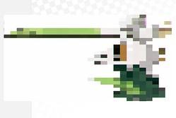 『ポケモン ソード・シールド』謎の新ポケモンの正体を考察。鳴き声やその姿にヒントあり?
