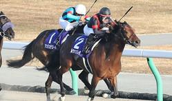 ルヴァンスレーヴが現役引退… 種牡馬入りへ