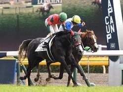 【東京3R】オルフェーヴル産駒 マイネルミンドールが初勝利!