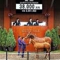 ハーツクライ産駒のヒルダズパッション20(手前)(C)Japan Racing Horse Association