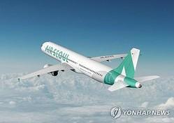エアソウルの旅客機(同社提供)=(聯合ニュース)