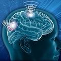 脳の働きで兵器を操作する研究が米で進む 国防総省が資金供与