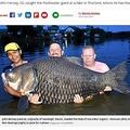 世界最重量の鯉科の魚を釣り上げた男性(中央)(画像は『Mirror 2019年7月3日付「Brit angler lands world record 16.5st carp after fighting with beast for 80 mins」(Image: John Harvey/BNPS)』のスクリーンショット)