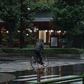 台風19号が直撃へ「自転車の固定」など今できる対策のポイント