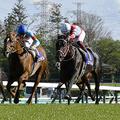 GI日本ダービーで注目の3歳牡馬 1番人気はコントレイル