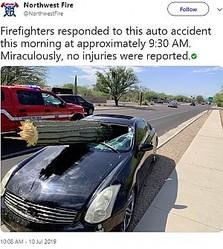 運転席に突き刺さる巨大なサボテン(画像は『Northwest Fire 2019年7月10日付Twitter「Firefighters responded to this auto accident this morning at approximately 9:30 AM.」』のスクリーンショット)