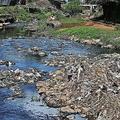 ケニアの首都ナイロビのスラム街コロゴチョを流れる、汚染が深刻なナイロビ川(2019年5月17日撮影)。(c)AFP=時事/AFPBB News