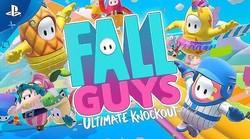 FallGuys(配信サイトより)