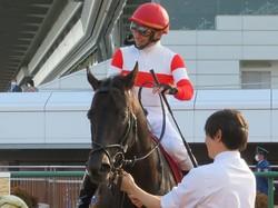【中山記念】ダノンキングリーが重賞3勝目!人気に応える