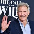 米カリフォルニア州ロサンゼルスで主演作のプレミア上映会に出席する米俳優のハリソン・フォード(2020年2月13日撮影)。(c)Amy Sussman/Getty Images/AFP