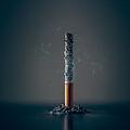 使い捨てストローよりも悪影響 海洋汚染の本当の脅威はタバコのフィルター