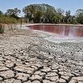ピンク色に変色し、干上がりかけているパラグアイ・リンピオのセロ湖(2020年10月19日撮影)。(c)Norberto DUARTE / AFP