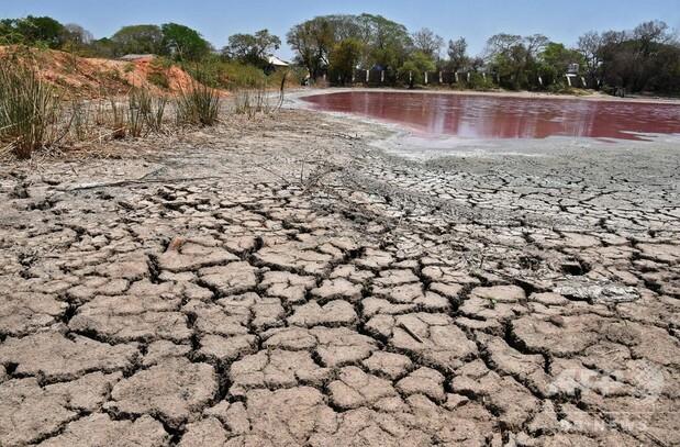 ピンクに変色、干上がる湖 工場廃棄物が原因か パラグアイ