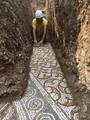 イタリア・ベローナに近いネグラールディバルポリチェッラ郊外で、古代ローマのモザイク画を発掘する考古学者。Superintendence of Fine Arts and Landscape of Verona, Rovigo and Vicenza提供(2020年5月20日撮影、28日提供)。(c)AFP PHOTO / SUPERTINTENDENCE OF FINE ARTS AND LANDSCAPE OF VERONA, ROVIGO AND VICENZA / HANDOUT