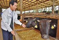 乳用種の飼養頭数が1000頭からゼロ頭になった藤原さん。「白黒の牛」は牛舎から姿を消した(宮崎県高鍋町で)
