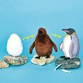 卵・ヒナ・成鳥と3変化する「オウサマペンギンぬいぐるみ」発売