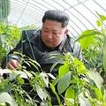 北朝鮮兵士5人餓死の異常事態