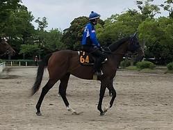 【ユニコーンS】デアフルーグ 津村「大きなところを狙える馬