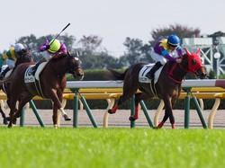 【東京4R/2歳新馬】ワークフォース産駒 シトラスノキセキがデビュー勝ち