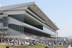 京都競馬場のスタンド