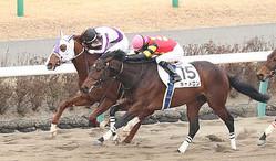 【中山新馬戦】12番人気ナガレボシトリキシが逃げ切りV 原田「最後はしぶとかった」