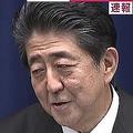 安倍首相が小泉進次郎氏の起用に言及「政治的技術において年季が入ってる」