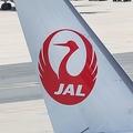 座席予約時に「幼児マーク」表示 JALのサービスに海外でも賛否