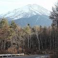 富士スバルライン 森林を分断か