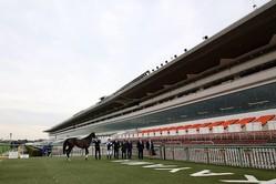 JRAは8月15日の新潟競馬から県内在住者に限り入場再開