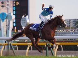 2019キングジョージ�世&クイーンエリザベスステークス(G1)日本馬が予備登録