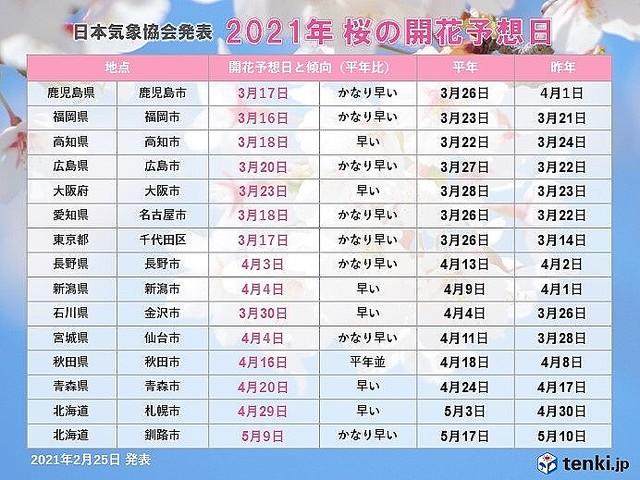 開花 2021 桜