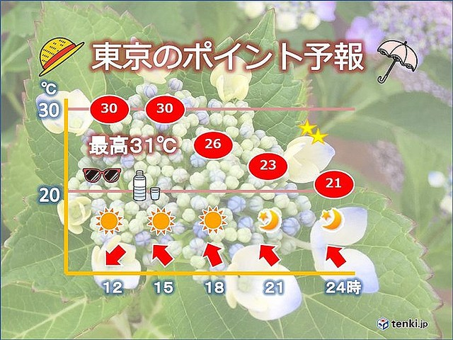 e2f9e466c2f きょうの都心は、最高気温31度の予想。先月27日以来10日ぶりに暑さ強烈。日陰や木陰を求めても暑そう。