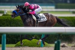 【阪神1R】武豊 スマートフルーレが5馬身差圧勝!圧倒的人気に応える