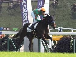 【新馬/東京4R】上がり32.9!アカノニジュウイチが完勝