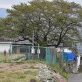 乳児が遺棄されていた空き家の庭を調べるため、警察官が設置したとみられるテント=長野県東御市新張で2021年5月5日午前7時35分、坂根真理撮影
