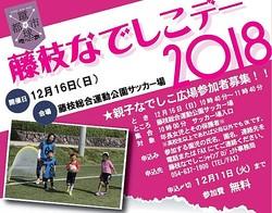 女子サッカーで地域貢献・活性を 「藤枝なでしこシャインプロジェクト」主催イベントが16日に開催、海堀らが来場