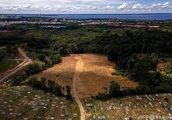 ブラジル・アマゾナス州の州都マナウスにある「アパレシーダの聖母」墓地(2021年1月22日撮影)。(c)MARCIO JAMES / AFP