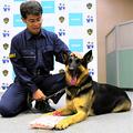 不明女性 警察犬が10分で発見
