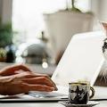 テレワーク中、ノートパソコンを使用している女性のそばに猫がいる