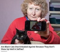 黒猫の貰い手が現れない理由は「自撮りで映えない」から?(画像は『real fix 2018年1月29日付「Are Black Cats Discriminated Against Because They Don't Show Up Well In Selfies?」』のスクリーンショット)