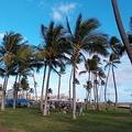 ワクチン接種進むハワイ、米本土からの観光客が激増 例年並みの水準に