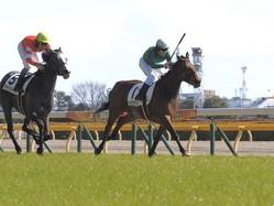 【東京5R】ルメール騎乗 オーロラフラッシュが2勝目