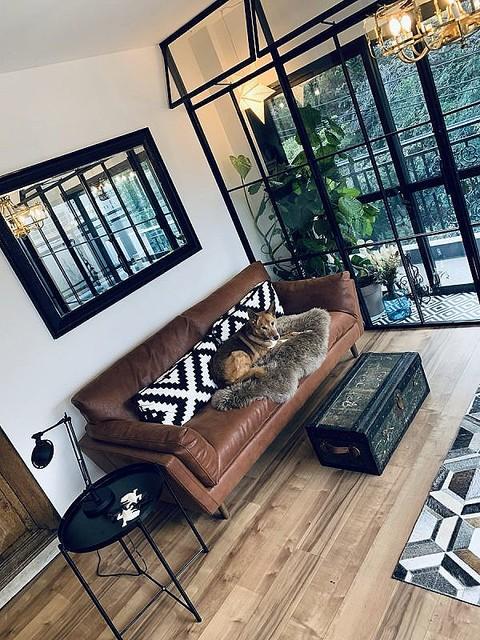 インテリア好きのクリエイターさんが「犬猫優先の努力の果て」に作り上げたお部屋がオシャレ