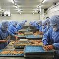中国河北省・食品加工工場での生産ラインの様子(YuanGeng/stock.adobe.com)