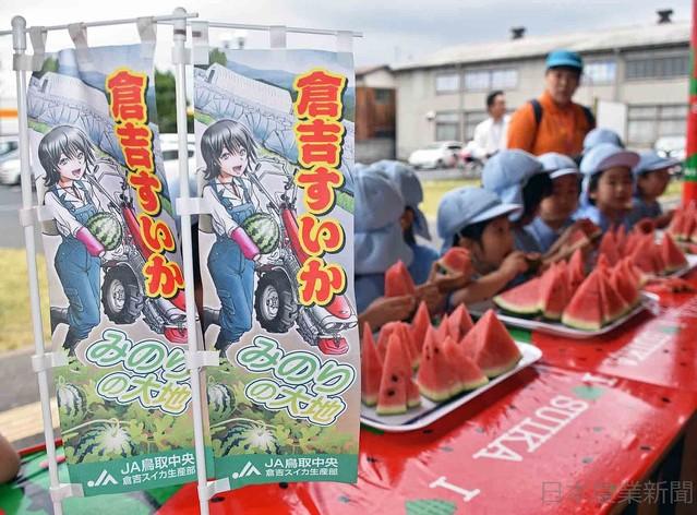[画像] コミックキャラ×倉吉すいか 地元舞台&農業女子 JA鳥取中央 販促に