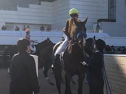 日曜中山6R新馬は石橋騎乗のミュアウッズが逃げ切り圧勝