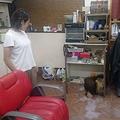 台風5号の影響で福岡県を中心に600棟以上が浸水 一部で大雨続く